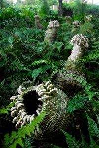Jason Lim, Nature Borne Exhibition, Singapore